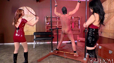 great-whipping-at-clubdom